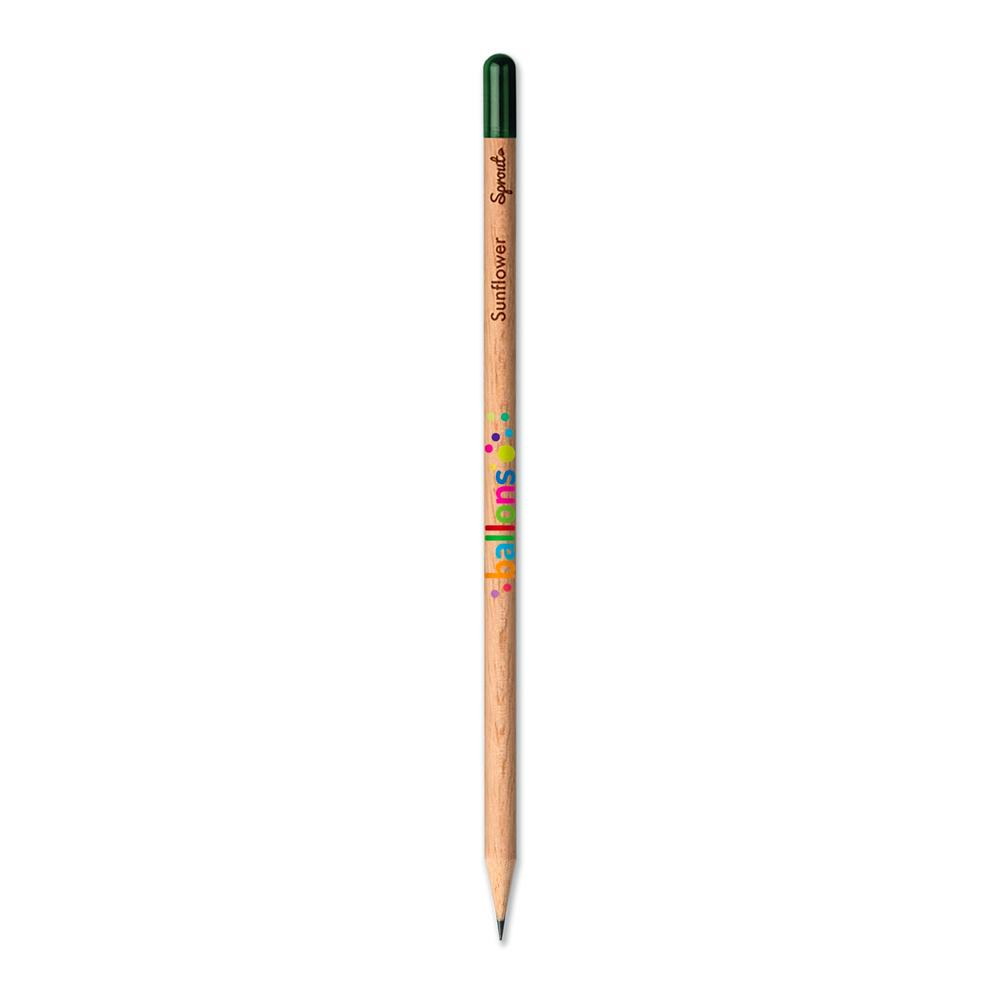crayonaplanter3