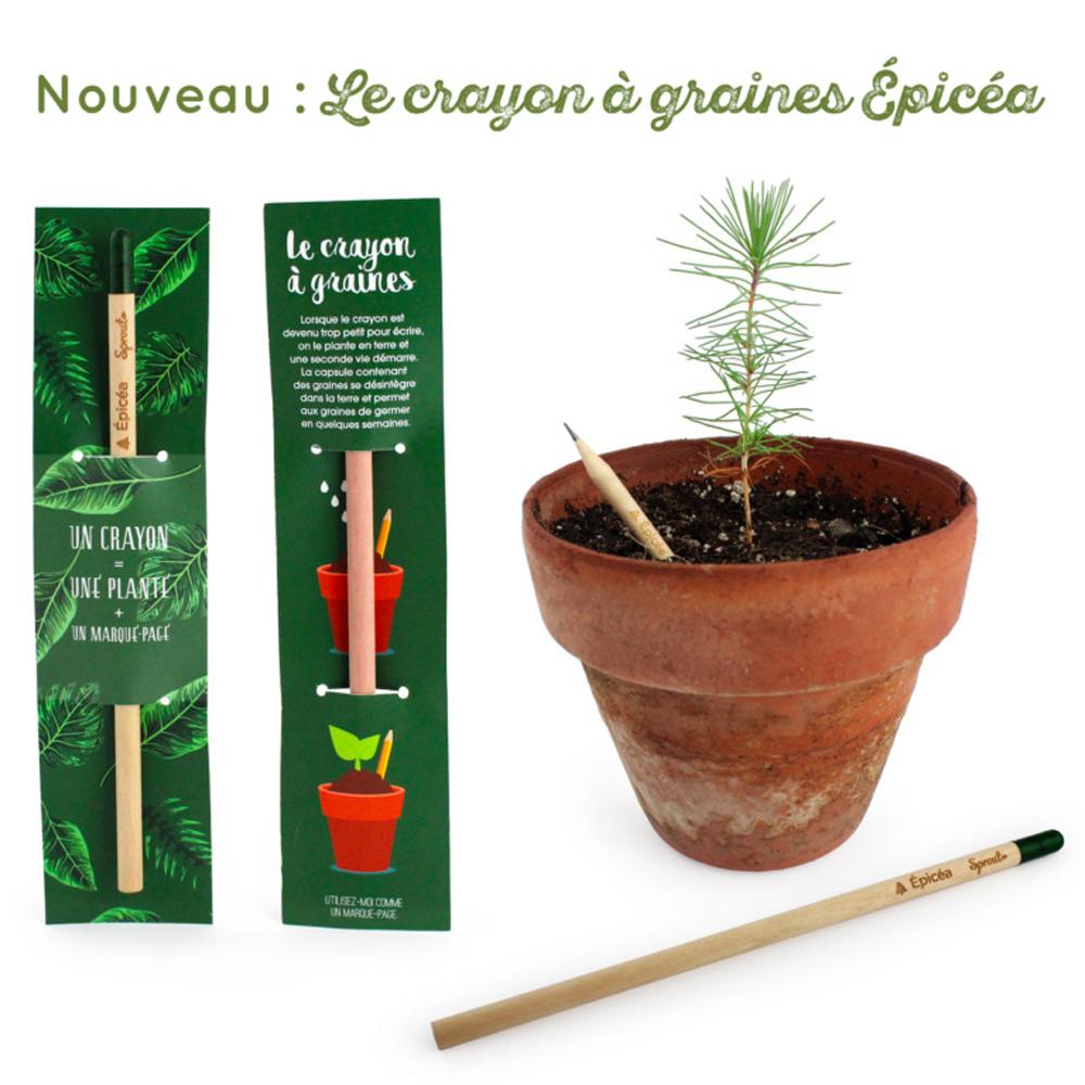crayonaplanter4